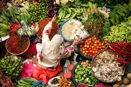dietary planet health diet